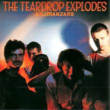220px-Teardrop_Explodes_-_Kilimanjaro_CD_album_cover