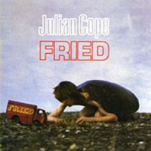 220px-Jcopefriedalbum