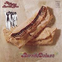 Burrito_Deluxe