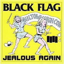 220px-Black_Flag_-_Jealous_Again_cover