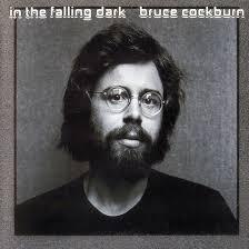 in-the-falling-dark