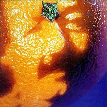 a_picture_of_nectar_phish_album_-_cover_art